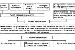 Схема приватизации дачи