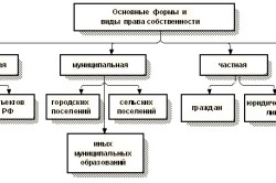 Формы и виды права собственности