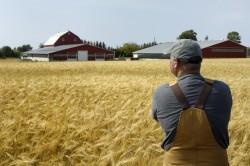 Хозяйское отношение к земельному участку