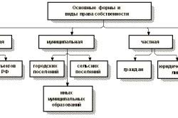 Виды и формы права собственности
