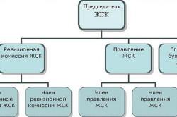 Типовая структура ЖСК